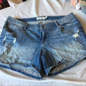 Torrid Distressed Jean Shorts